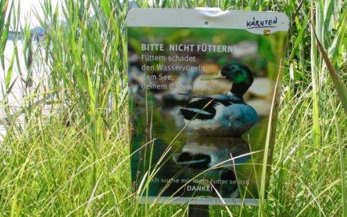 Gute Kampagne gegen das Entenfüttern, die sich besser aus der Natur versorgen sollen.